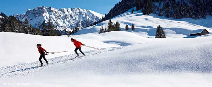 Langlaufen im Bregenzerwald